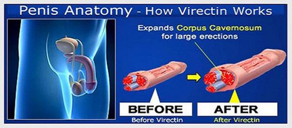 vimax original canada obat pembesar penis alami terbaik